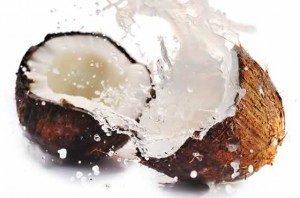 kokosnuss-300x198-503445905, 10, 2021